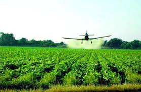 Study: Agricultural way of life might contribute  to allergic reactions