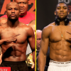 Floyd Mayweather and Anthony Joshua weigh in on Mike Tyson vs Roy Jones Jr exhibition combat