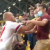 Hamburg's Toni Leistner emulates Eric Dier by climbing into stands to scrap with Dynamo Dresden fan