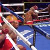 Watch when Deontay Wilder KOd opponent with punch no one noticed and crowd booed as a result of they thought he took a dive