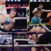 Ricky Hatton's son wins skilled boxing debut as he emulates his father's well-known physique assault