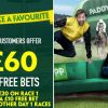 Get £60 in free bets once you wager £20 on the primary race on day 1
