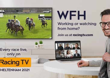WIN! A 50″ TV and a 12 months's Racing TV membership! – talkSPORT