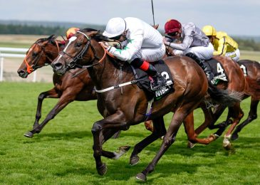 Guess £10 Get £30 in free bets at Superb Goodwood or every other UK assembly with 888 Sport